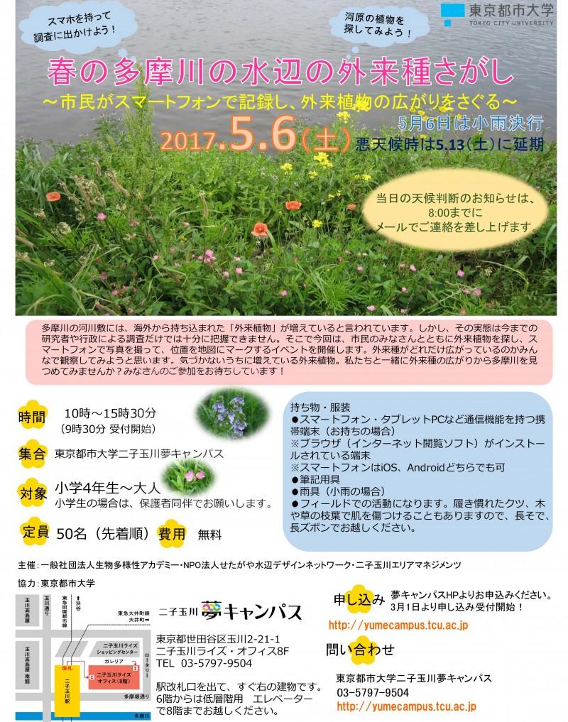 Microsoft PowerPoint - 春の多摩川ポスターとチラシ .