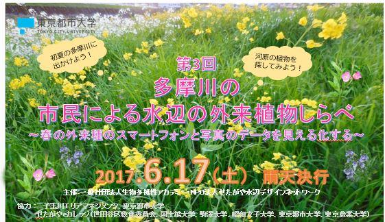 第3回 多摩川の市民による水辺の外来植物しらべ~春の外来種のスマートフォンと写真のデータを見える化する~