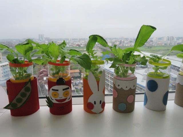 ベジ・カフェ 野菜を育てる